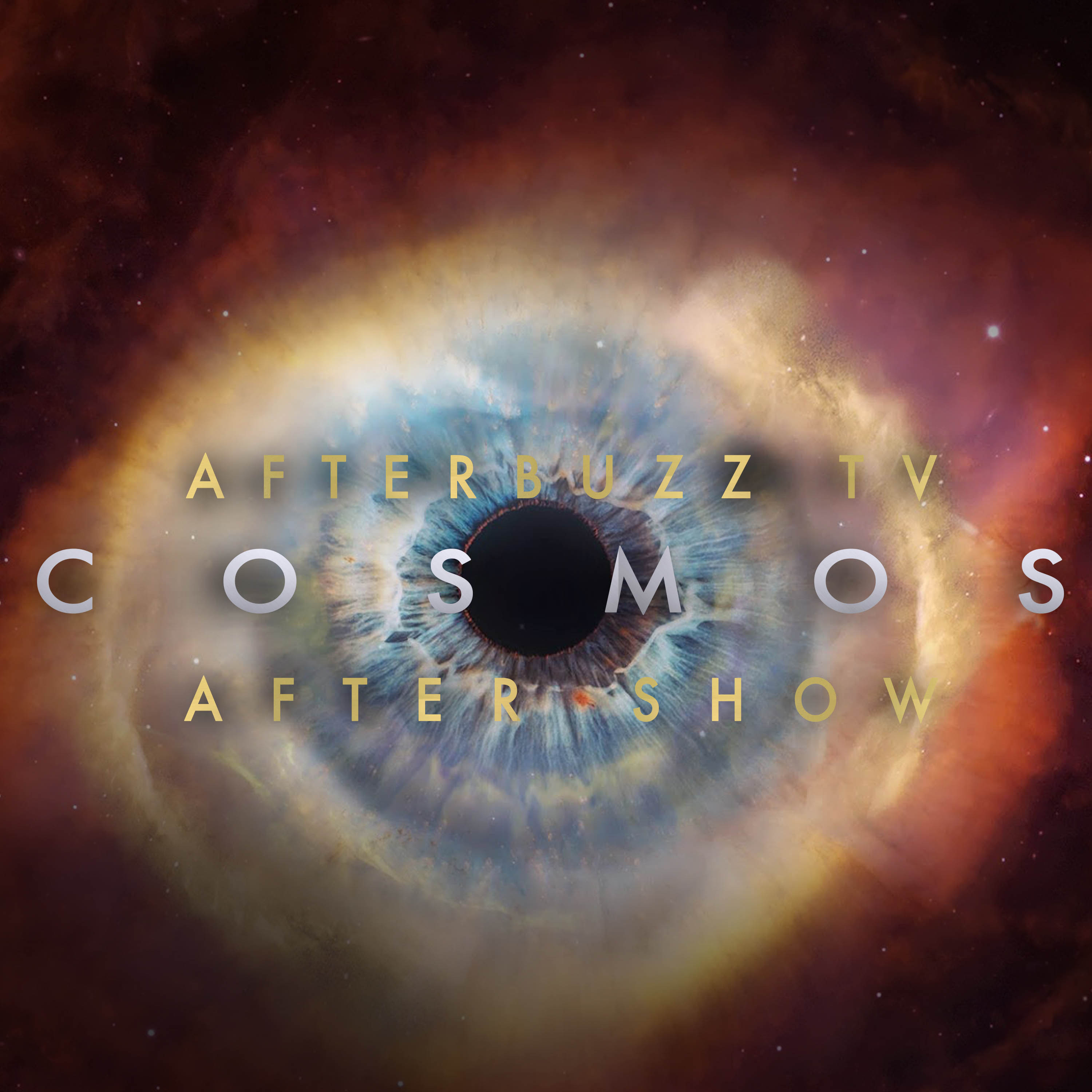 Cosmos: A Spacetime Odyssey After Show