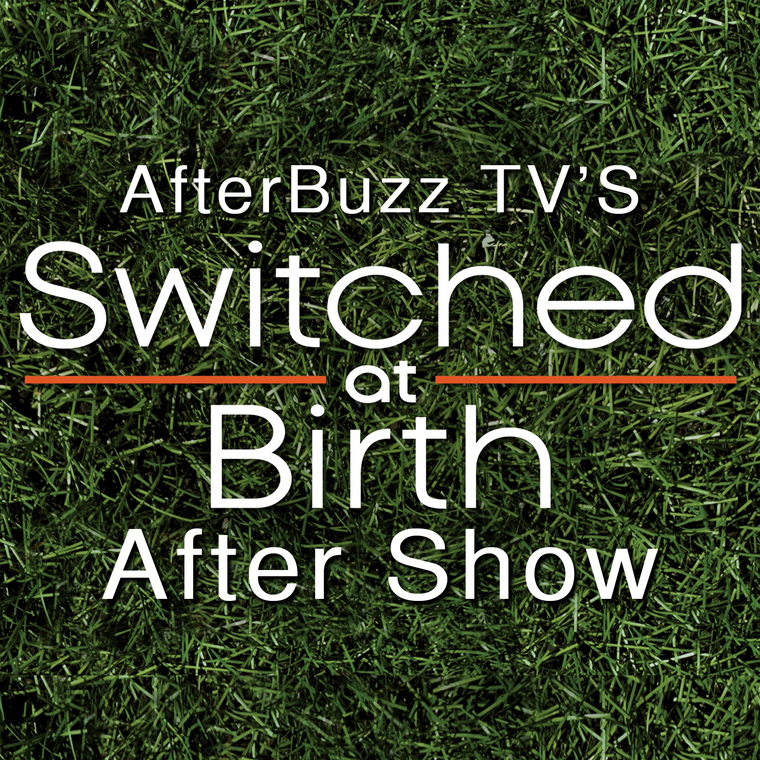 Switched at Birth After Show