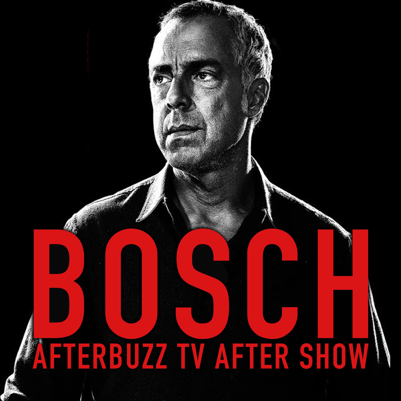 Bosch After Show